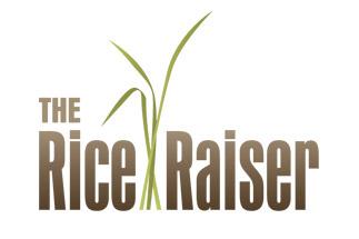 The Rice Raiser Logo Design